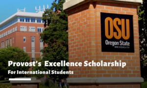 Provost's Excellence funding Scholarship