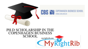 Ph.D. SCHOLARSHIP IN STATISTICS IN THE COPENHAGEN BUSINESS SCHOOL