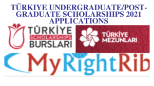 Türkiye Undergraduate/Post-Graduate Scholarships 2021 Applications